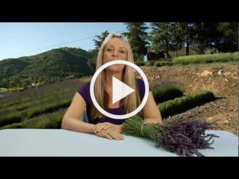 """Introduction to """"Creating with Lavender"""""""