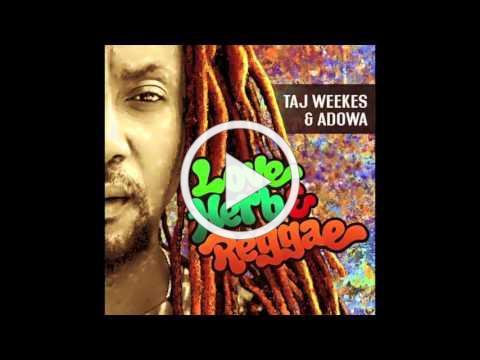 Taj Weekes & Adowa - Was It You - REGGAE