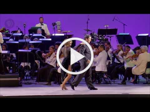 Adios nonino | Dudamel Conducts Tangos Under The Stars