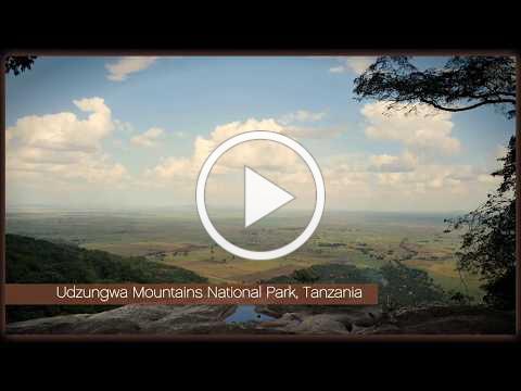 ORIGINAL BEANS Giving Udzungwas Elephants safe passage