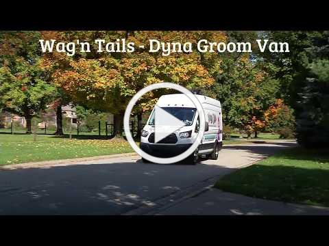 Wagn Tails Dyna Groom Van