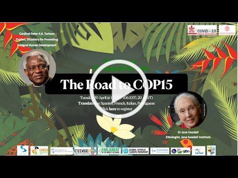 🌿🇻🇦Biodiversity Webinar: The Road to COP15