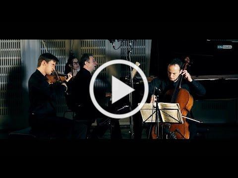 Schubert, Piano Trio No. 2, Op. 100, D. 929, in E-flat Major 2nd mov. - VIENNA PIANO TRIO