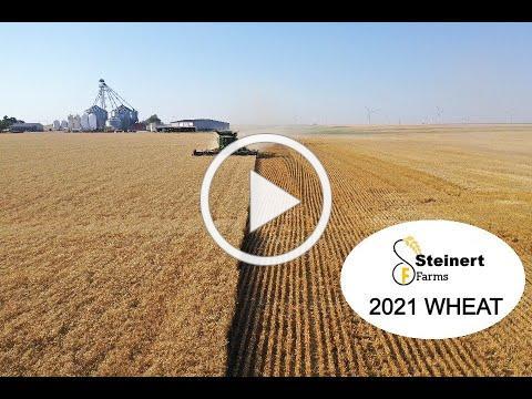 Steinert Farms- Wheat Harvest 2021