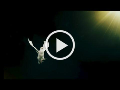 Marisol Carrasco - Ven Santo Espíritu - Video Lyrics