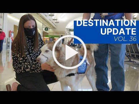 Visit Anaheim Destination Update (Vol. 36)