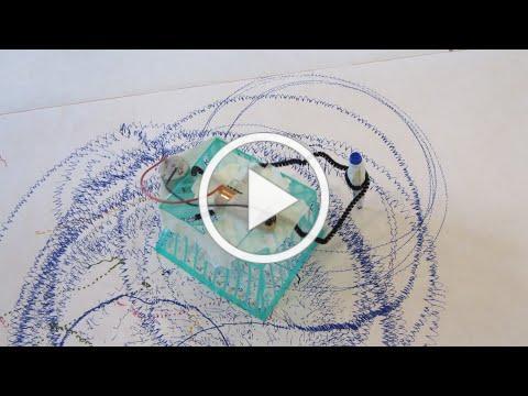 Travel for Kids | Exploratorium