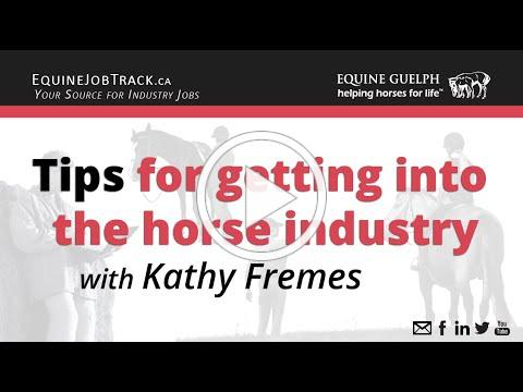 Tips for getting into the horse industry, particularly the non-racing industry with Kathy Fremes