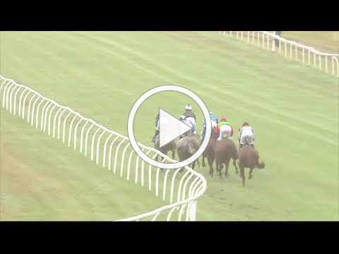 Shadwell Dubai International Stakes (Group 1 PA) - Newbury 29th July Race 6
