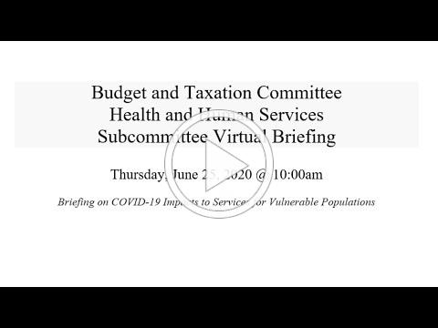 Budget and Taxation - Health and Human Services Subcommittee Virtual Briefing