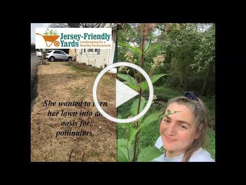 Jersey Friendly Yards Landscaping for a Healthy Community with Native Plants