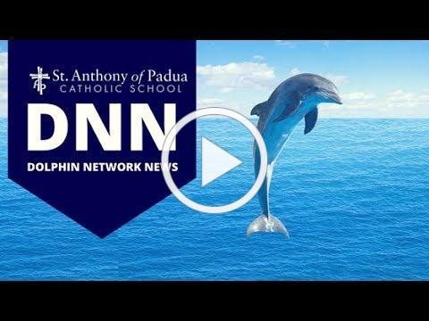 DNN Live May 15, 2020