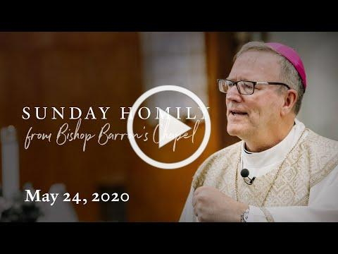 The Solemnity of the Ascension (Sunday Homily from May 24, 2020)
