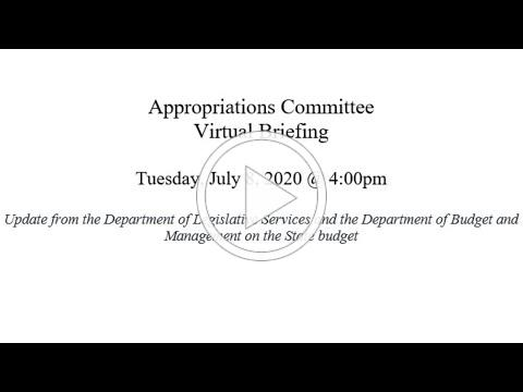 Appropriations Committee - Virtual Briefing