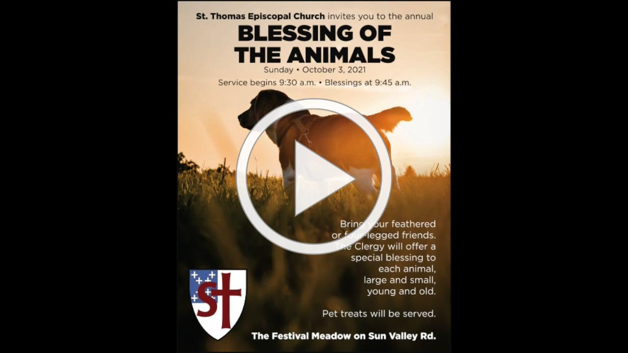 Blessing of the Animals 2021.mp4