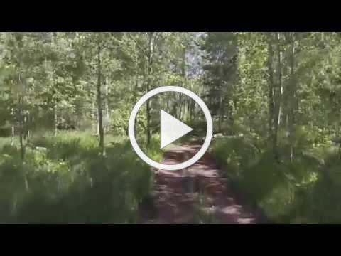 Atv Ride Jackson Hole, Wyoming On Shadow Mountain