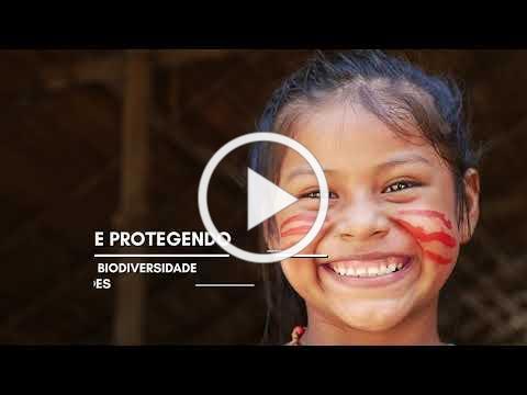 Amazônia - Unindo forças para proteger a maior floresta tropical do mundo