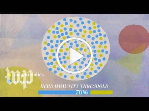 The power of natural immunity vs. herd immunity for coronavirus