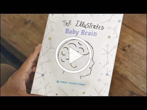 The Baby Brain