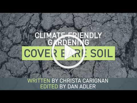 Cover Bare Soil - Climate Friendly Gardening