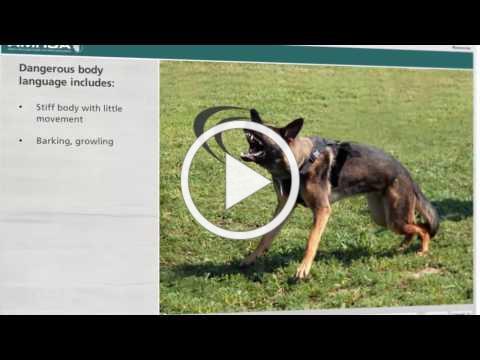 Dog Bite Prevention Course Trailer