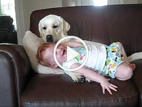 If you like cute dog & baby stuff, you'll love this....