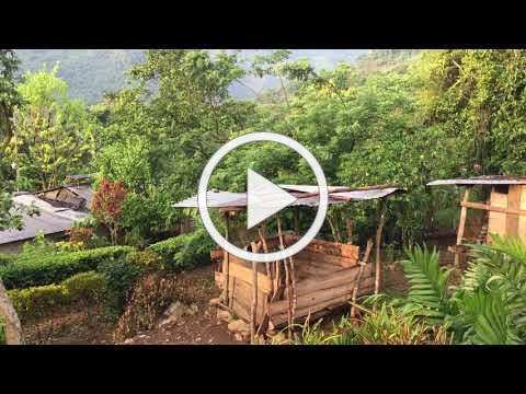 Eraclio's jungle village of 19 houses