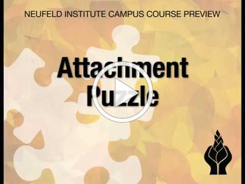 The Attachment Puzzle Preview Video