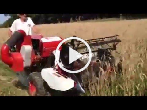 MGA Sirvinta Harvest