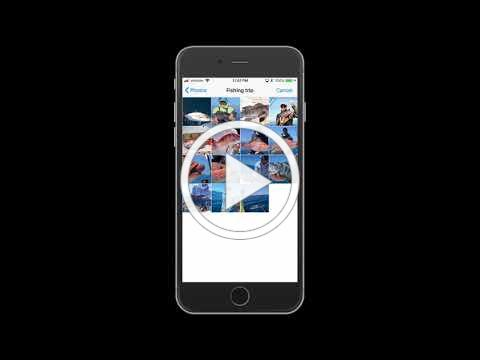MyFishCount App Demo