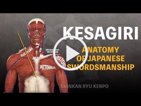 Japanese Swordsmanship Cutting Kesagiri Anatomy In Iaido