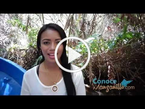 Estero Palo Verde Cuyutlan, Conoce Manzanillo