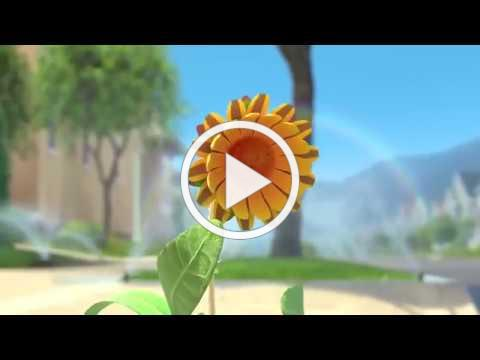 The Sunflower Motivational Short Film 2018