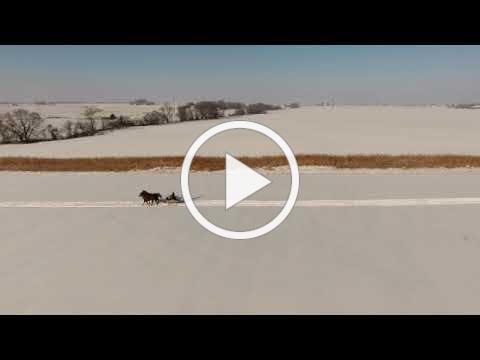 mini sleigh ride