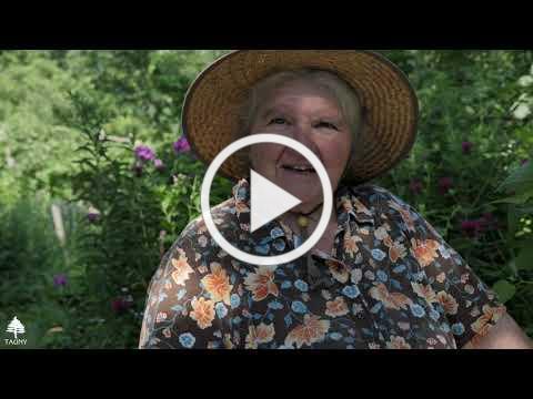 Tending the Wild Edible Garden with Jane Desotelle