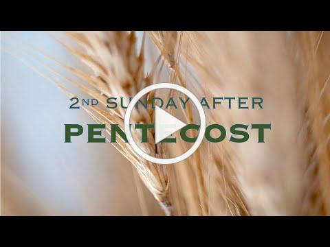 Service of the Word for the Second Sunday after Pentecost, Year A