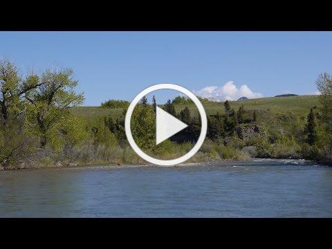 Badger Creek Trailer