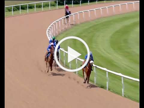Wolverhampton 10th June - The Royal Cavalry of Oman Congratulates Gary Maiden Stakes