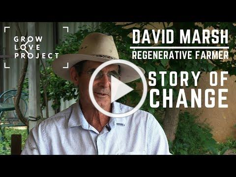 The Regenerative Farmer - David Marsh