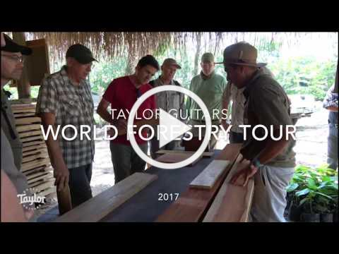 Bob Taylor's World Forestry Tour | Guatemala | Bob Taylor | April 21, 2017