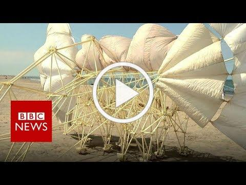 Skeletal 'beests' walk the shoreline - BBC News