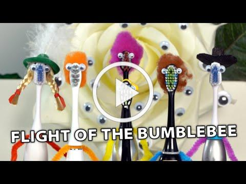 Flight Of The Bumblebee on 6 Electric Toothbrushes