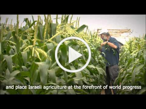 Agricultural Research in Israel's Arava Desert