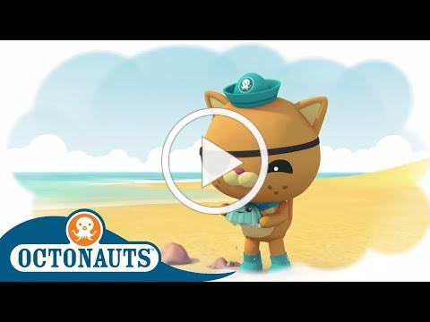 Octonauts - Showing Kindness to Others   Cartoons for Kids   Underwater Sea Education