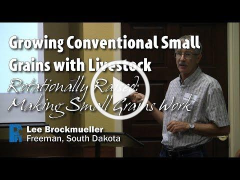 Growing Conventional Small Grains with Livestock - Lee Brockmueller