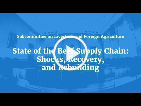 State of the Beef Supply Chain: Shocks, Recovery, and Rebuilding