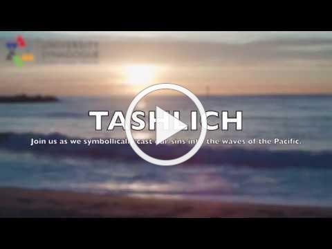 Tashlich UniSyn