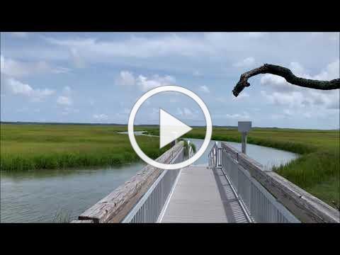 CoastFest- Cannon's Point Preserve Marvelous Marshes