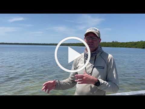 Celebrate Everglades Day 2021!