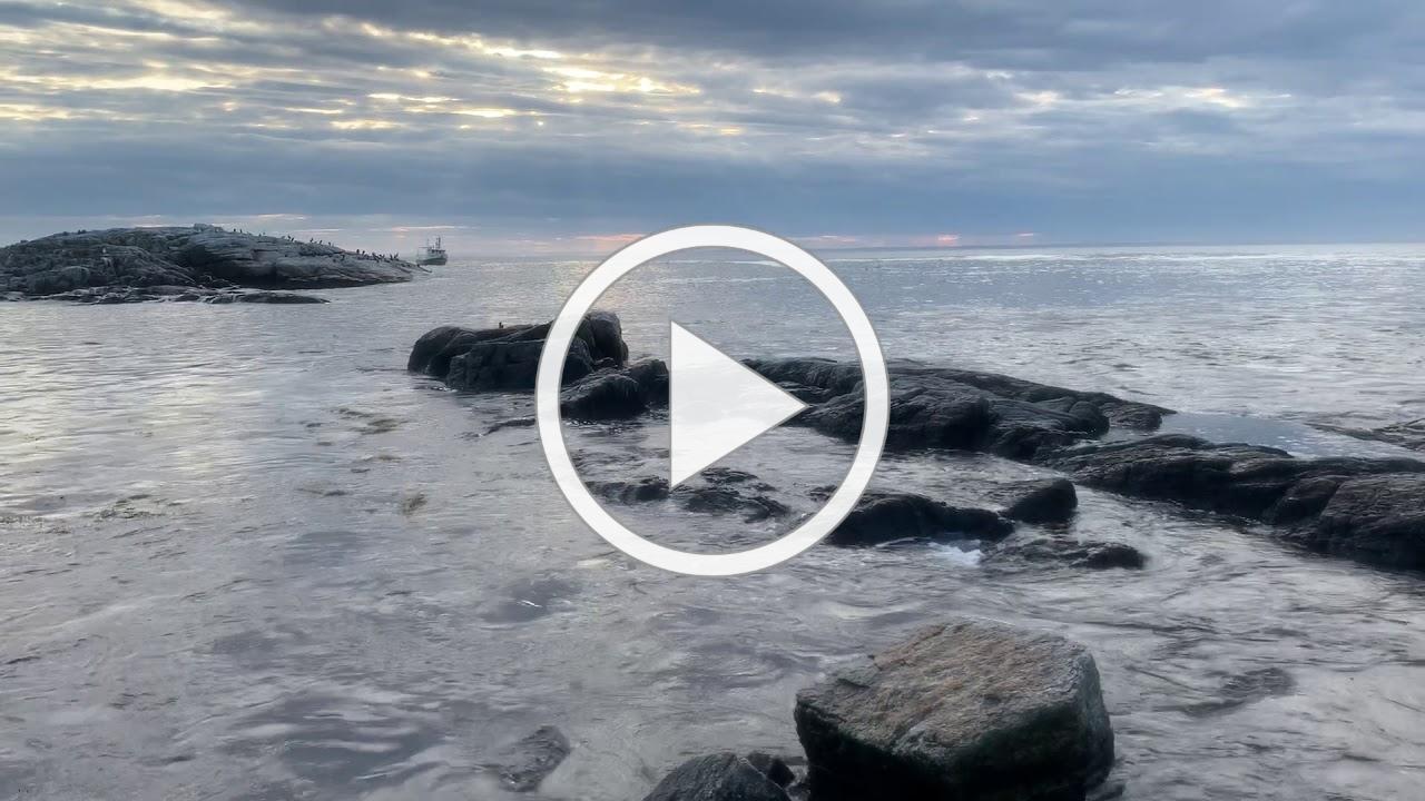 Appledore Island Fall 2019